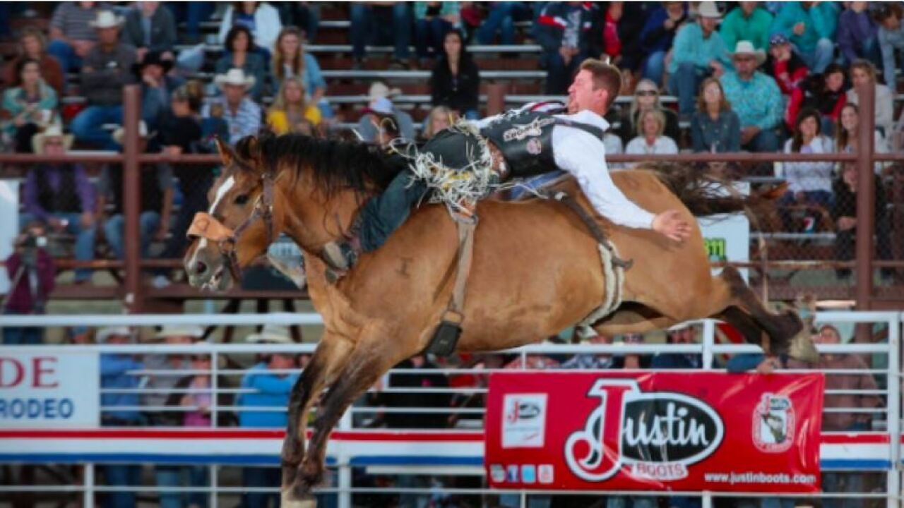 Cody Stampede Rodeo a go for Fourth of July weekend