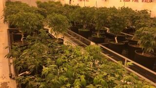 Local marijuana dispensary expanding