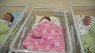 babies0130.PNG