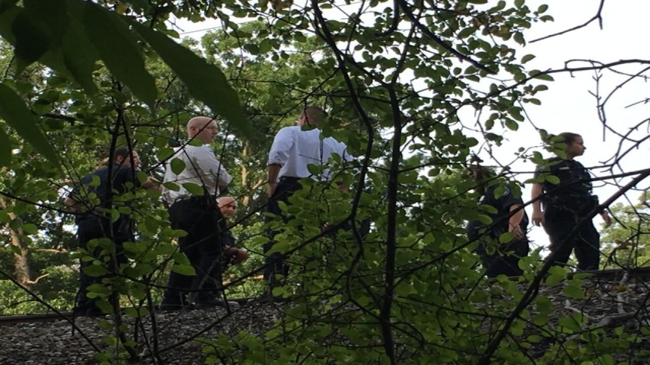 Pedestrian killed by train in Royal Oak