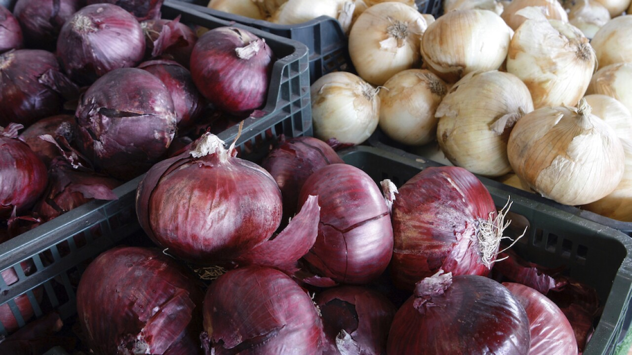 Onions linked to salmonella outbreak that has sickened nearly 400 people