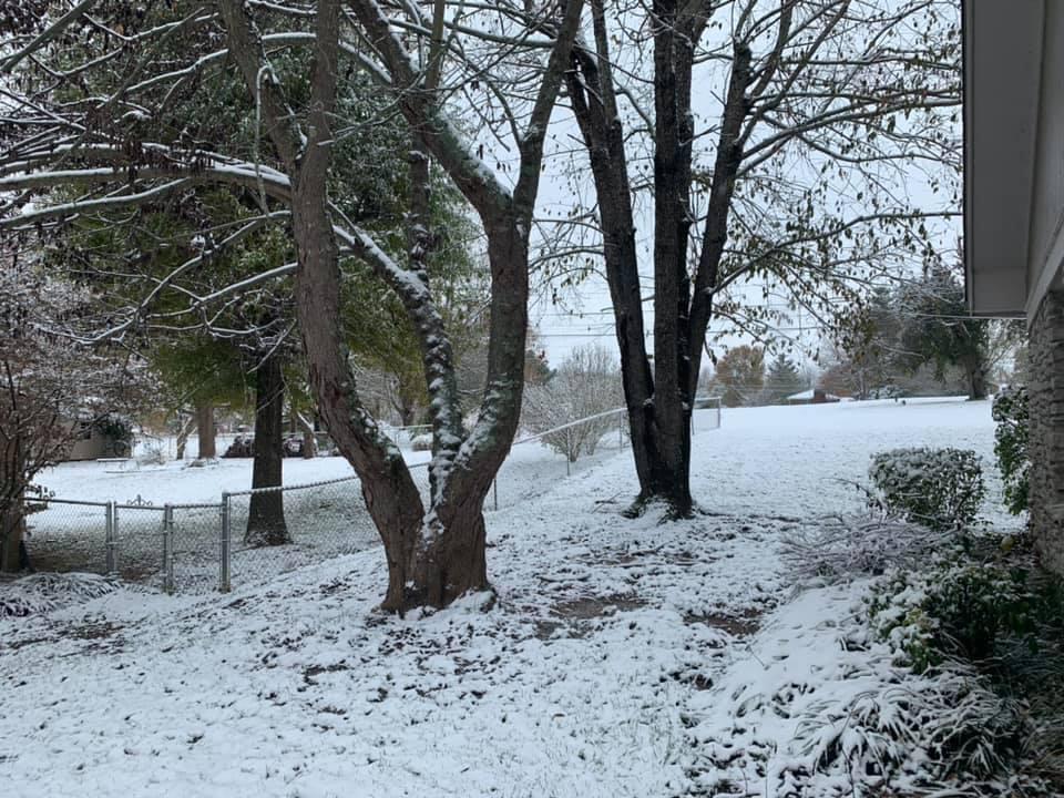 danville snow