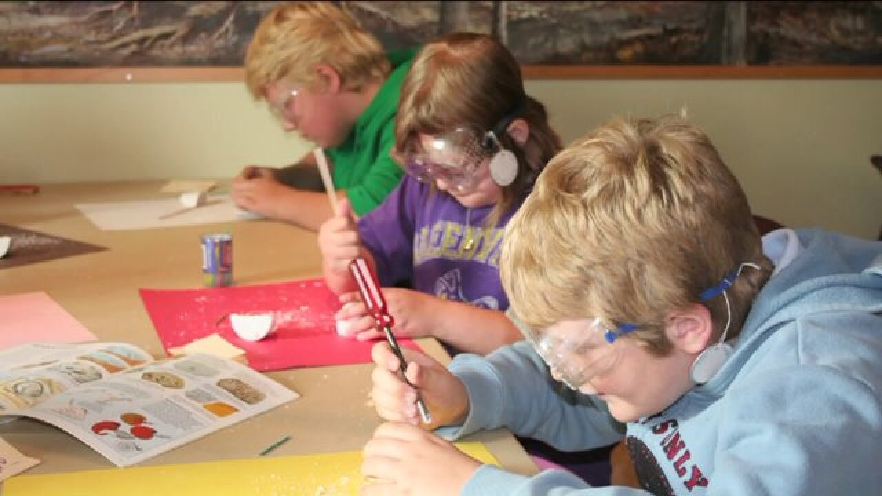 Registration open for Grand Rapids Public Museum Summer Camps