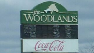 The Woodlands.jpg