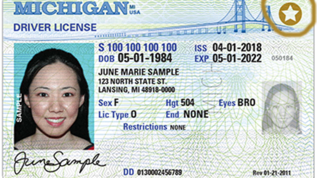 Id On Driver's Michigan Immigrants Would House Cards For Bills Licenses Marking Have