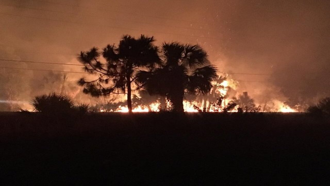 200 acre Watertower brush fire rages in Hernando