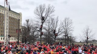 Chiefs fans in trees