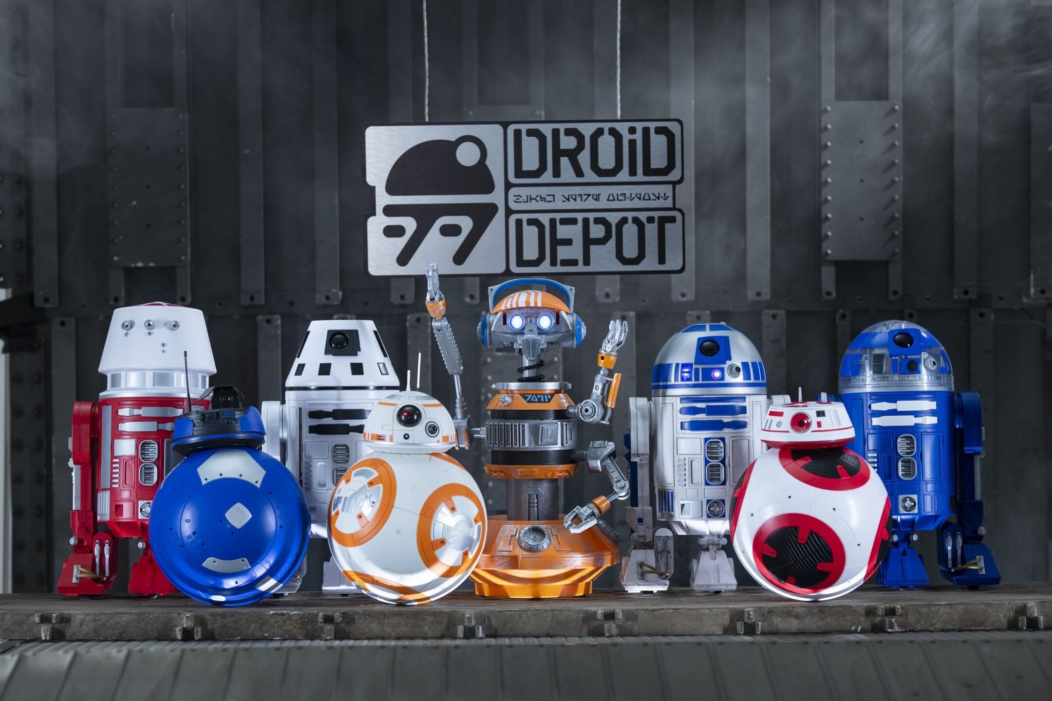 Star Wars: Galaxy's Edge Merchandise - Custom Droids