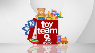 Toy Team 9 Anniv FS.jpg