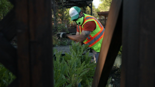 Despite Colorado's high unemployment rate, landscaping industry says they're having trouble hiring