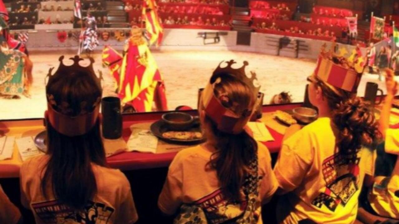 Medieval Times bringing dinner show to AZ