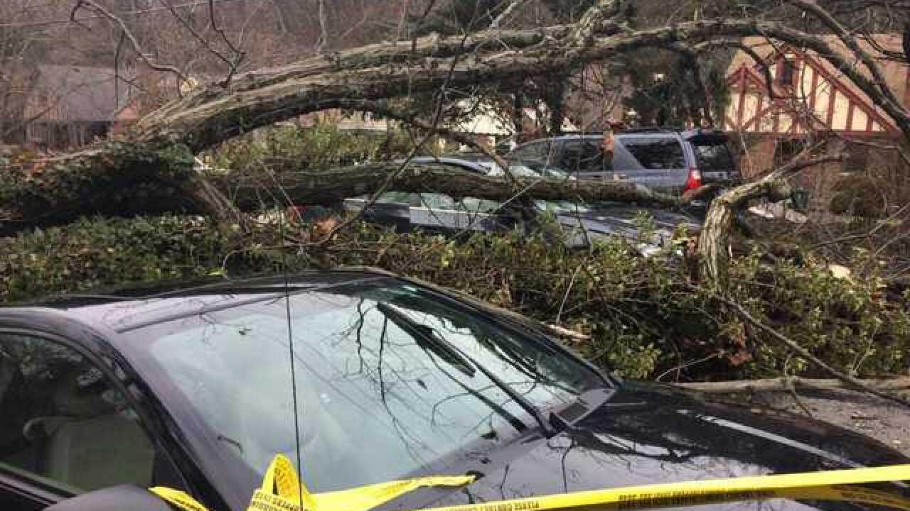 Late February brings punishing springtime storms