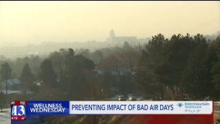 Wellness Wednesday: How to prevent the impacts of bad air days