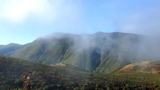 Marine clouds in the hills