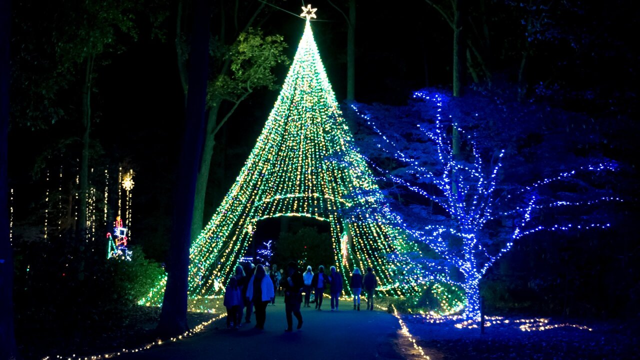 Norfolk Botanical Garden nominated for best holiday display in country, voting now open