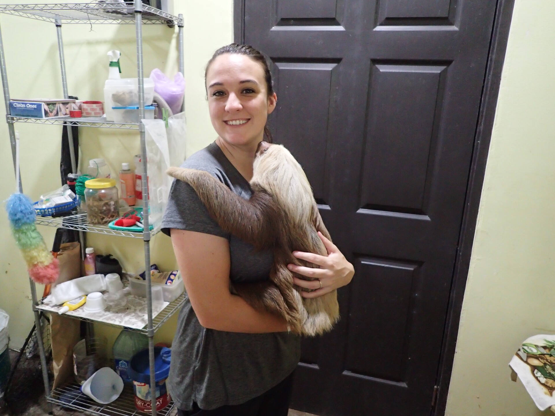 Baby Sloths (23).JPG