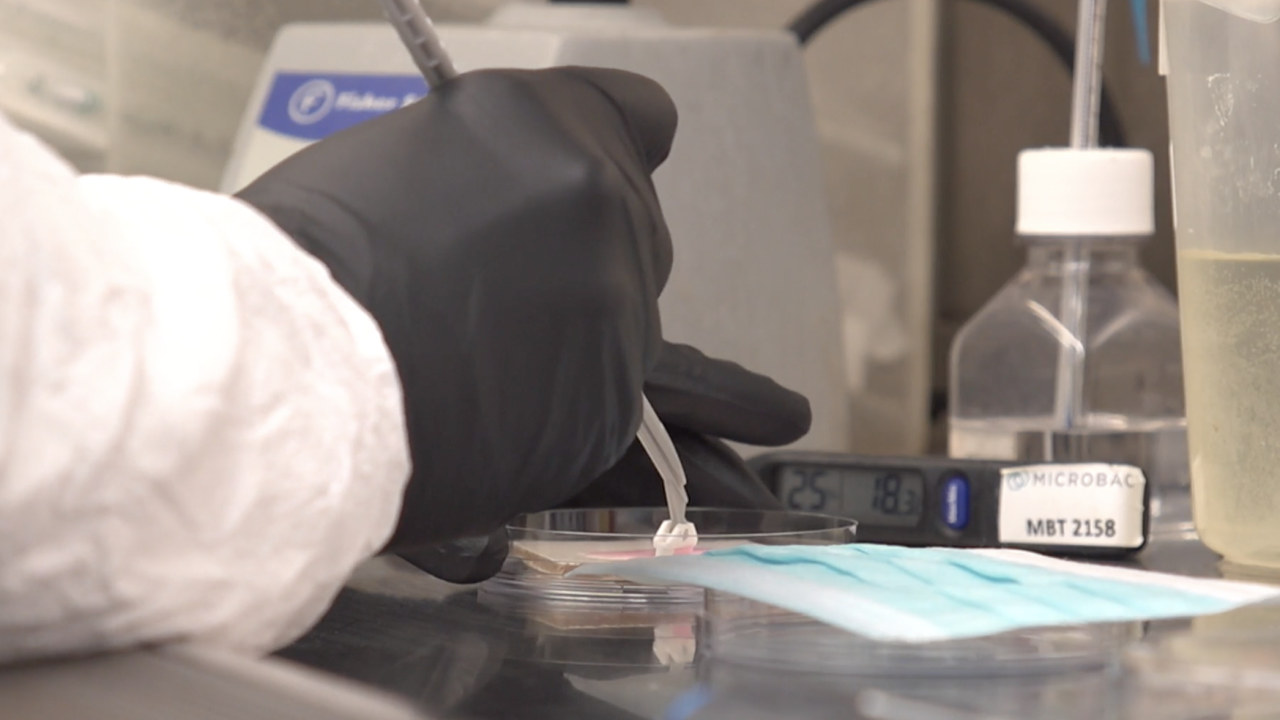 Ever since the pandemic began, the Microbac lab has tested products for hundreds of clients from around the world.