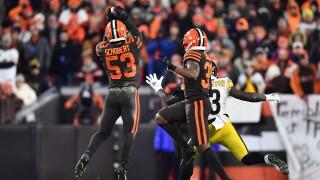 Pittsburgh Steelers v Cleveland Browns Joe Schobert
