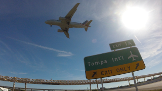 tampa-international-airport-american-airlines-plane.png