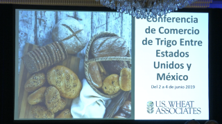Montana Ag Network: Mexico's impact on U.S. wheat industry