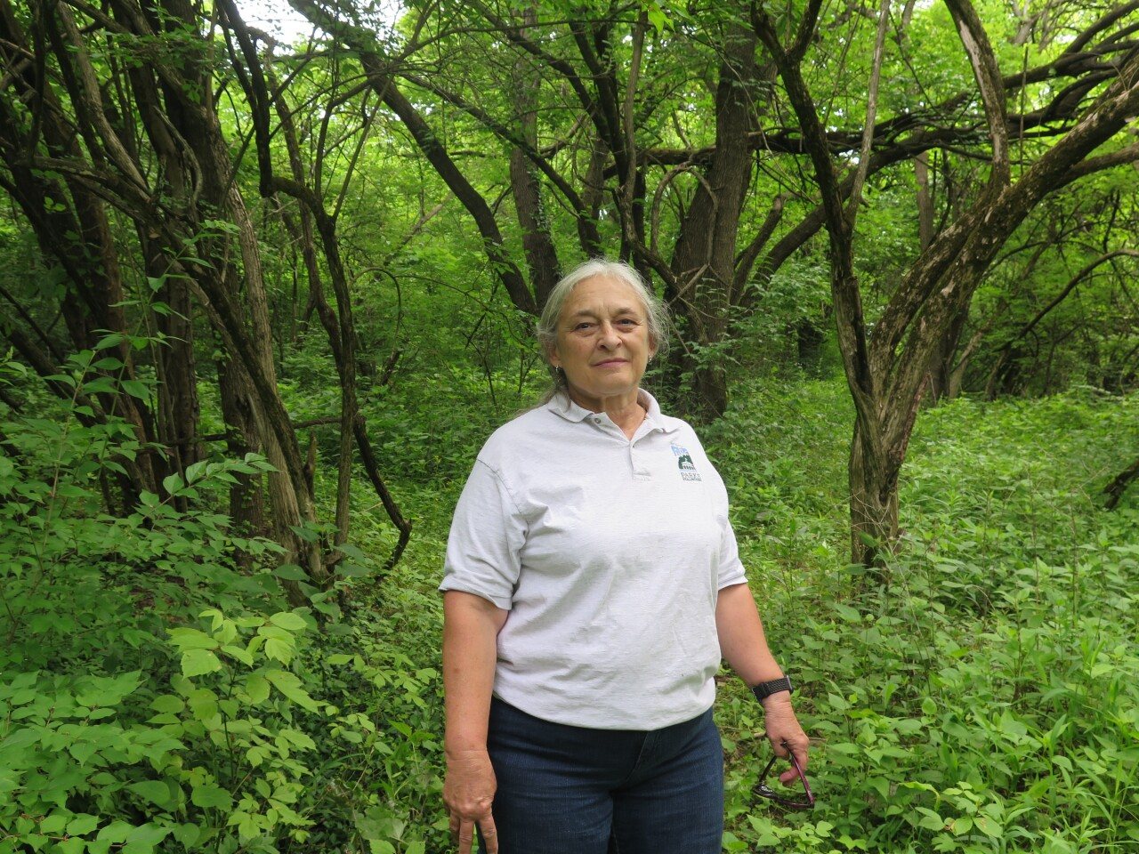 Mary Jo Bazeley is pictured standing in the overgrown Potter's Field cemetery. She is wearing a Cincinnati Parks volunteer shirt, and her long, white hair is pulled back.