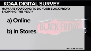 Digital survey 11/24