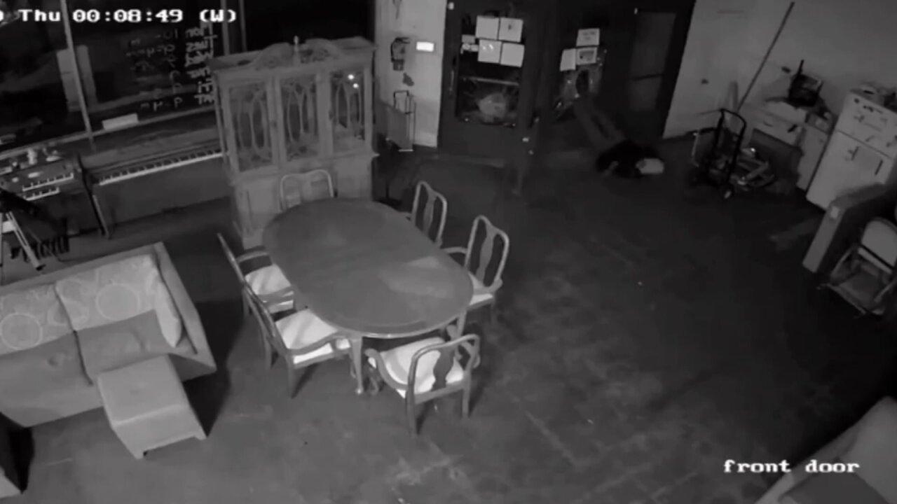 Business burglary in Newport News 2.jpeg