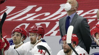 Jeff Blashill Red Wings Hurricanes Hockey