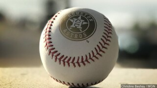 Rawlings Official MLB 2017 World Series Game ball