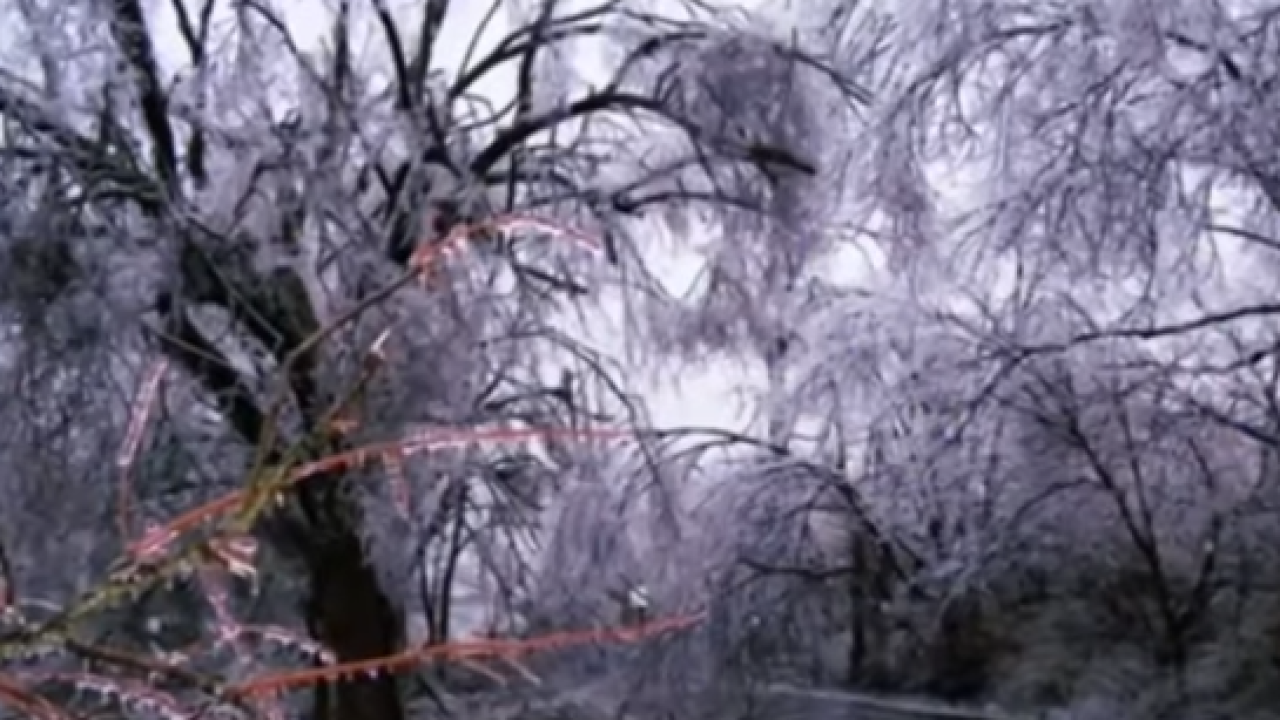 Ice storm in Danville.PNG