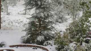 Snow, rain fall in northern Arizona