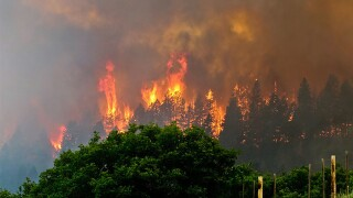 US Forest Service declares Colorado wildfire extinguished