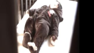 Vegas police, doctors share co-sleeping dangers