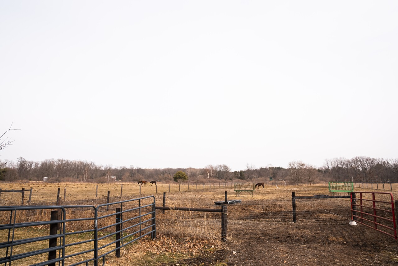 Land for the Horses