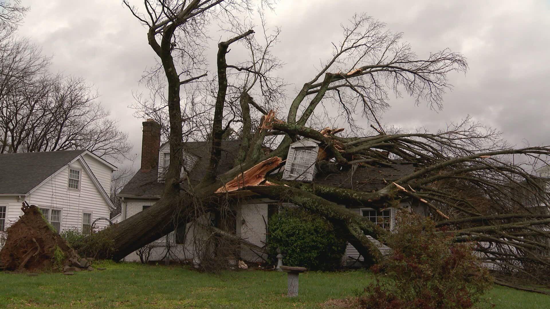 AM Cole- Melrose Storm Damage.transfer_frame_592.jpeg