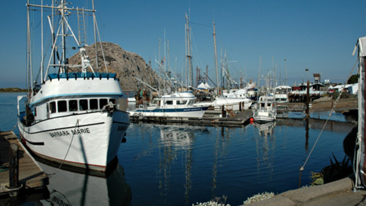 37th Annual Morro Bay Harbor Festival