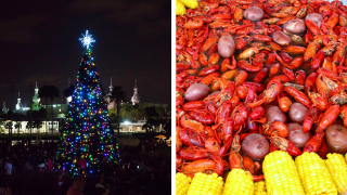 Weekend Events (Tampa Tree Lighting and Seafood Festival).png