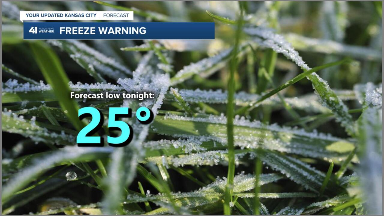 Freeze Warning