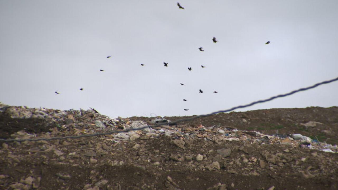 State senator proposes legislation to combat landfill odors