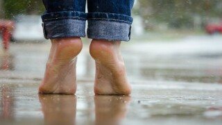 Barefoot Pavement.jpg