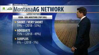 Montana Ag Network Weather: July 24th