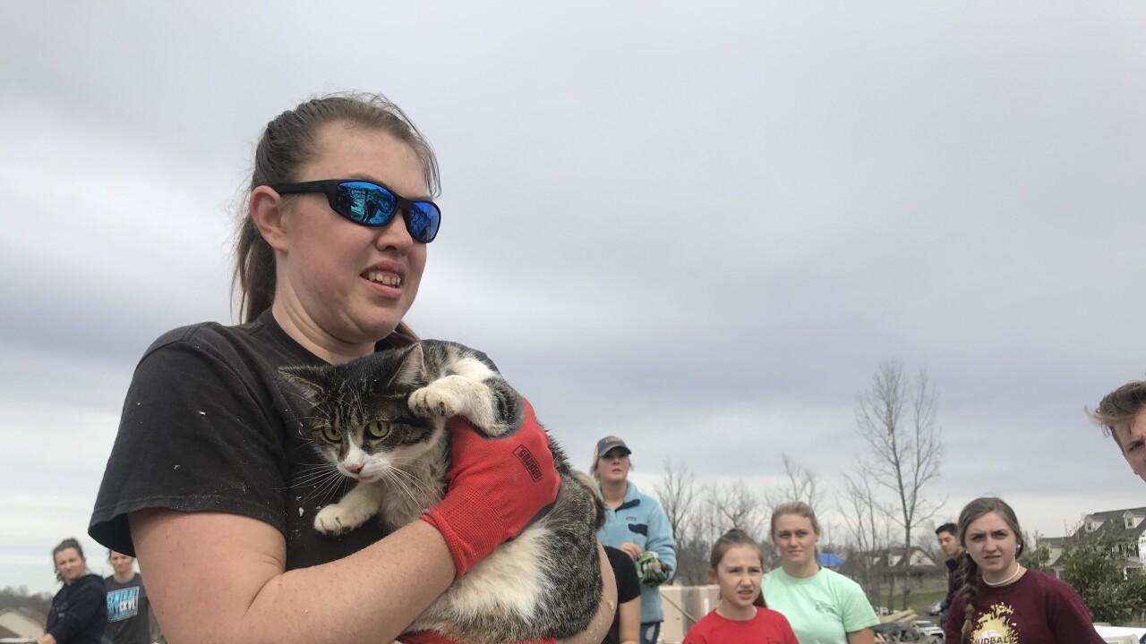 Cat rescued from tornado.jpg