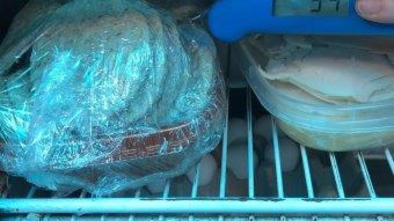 PR0006108 Sammy's Food Truck #6 916 (5).jpg