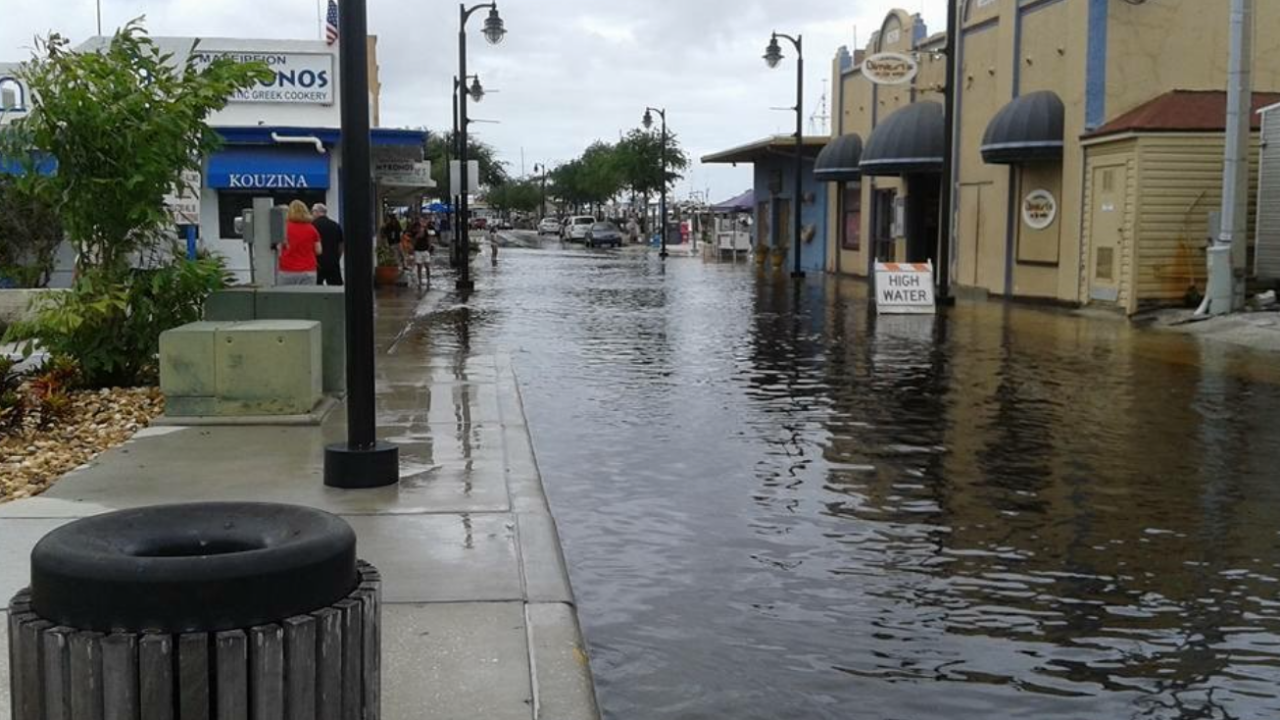 Tarpon Springs flooding.png