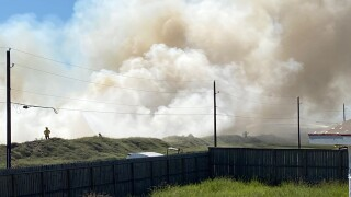 Arash Drive brushfire