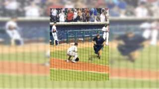 Opossum tagged out trying to steal home at CC Hooks game