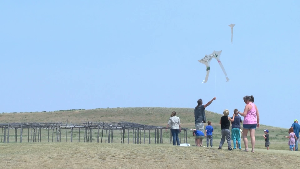 Taking to the sky at the Buffalo Kite Festival