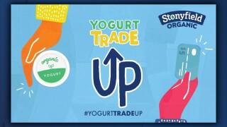 Stonyfield Yogurt.jpg