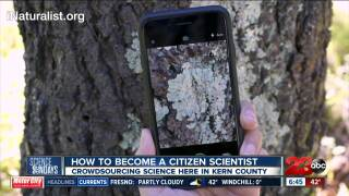 Science Sundays: How to become a Citizen Scientist