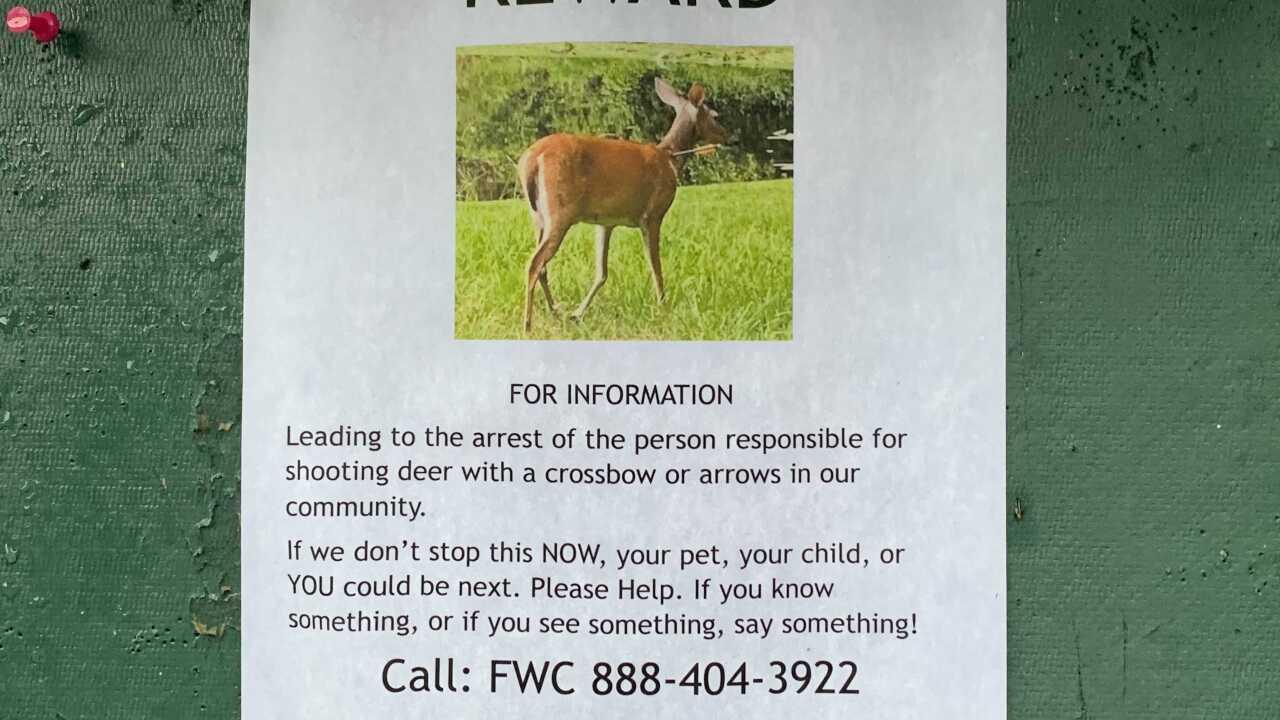 Deer flyer